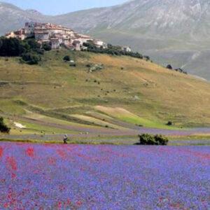 La Sibilla - Viaggio a Castelluccio di Norcia